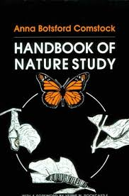 nature study for children and homeschool