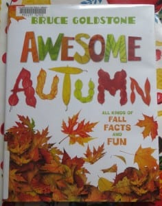 best books for fall, toddler fall book, preschool fall book, nonfiction fall book